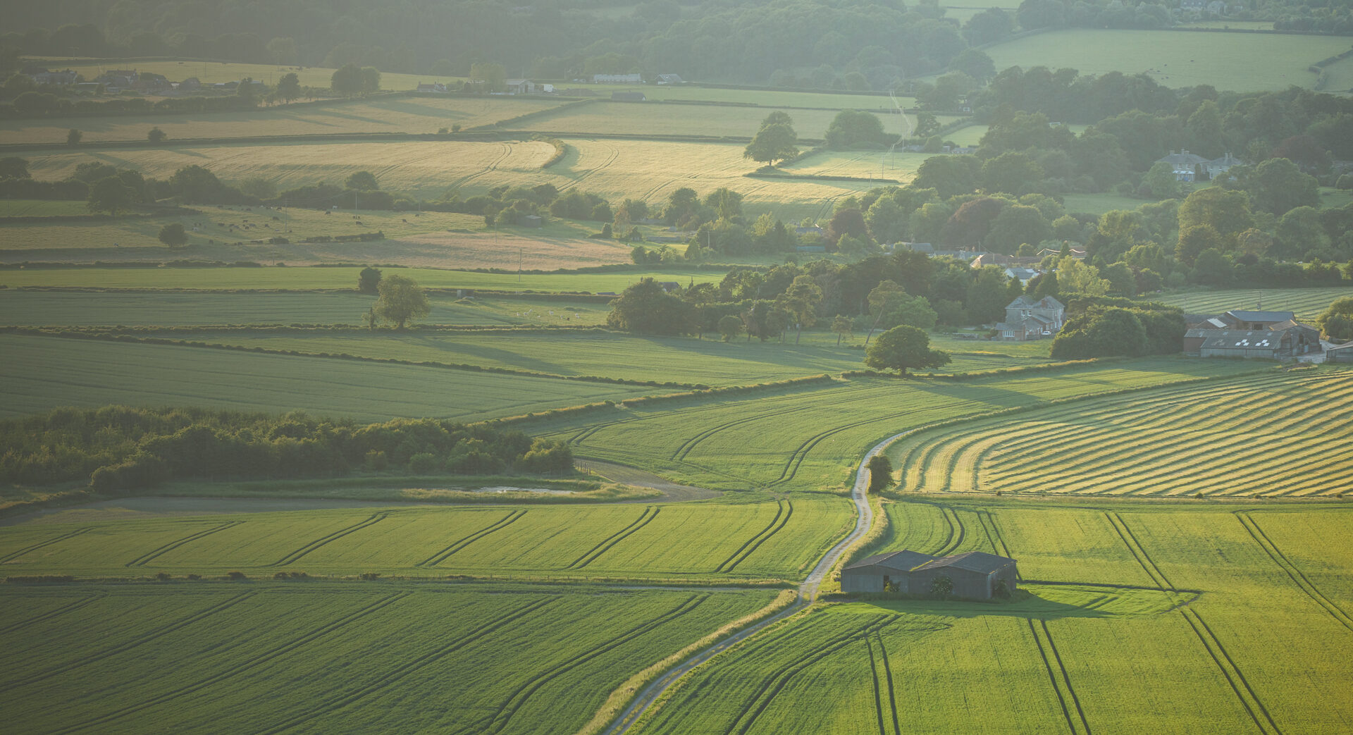 Rural Property for Sale and to Let