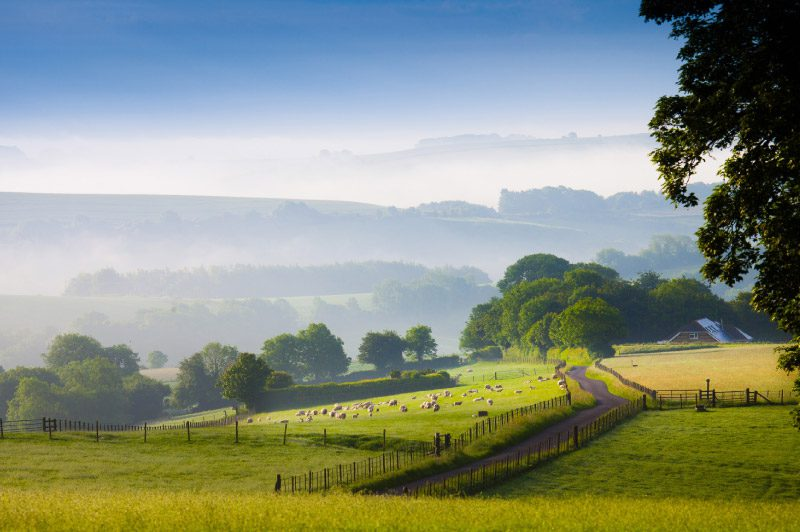 Rural Property in The Chalke Valley